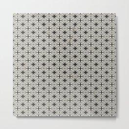 spi30 Metal Print