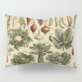 Vegetable Chart Pillow Sham