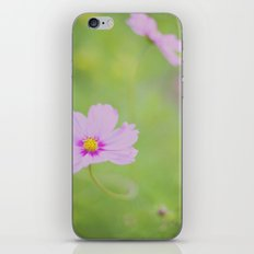 . delicate cosmo . iPhone & iPod Skin