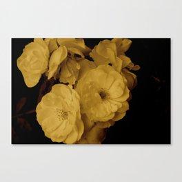 Sepia Rose Canvas Print