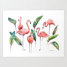Pink Flamingos with some Strelizia Foliage Art Print