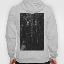 Redwood Forest XIII Hoody
