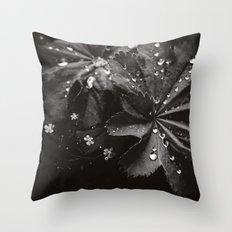 Secret Garden ~ No.10 Throw Pillow