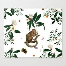 Monkey World: Amber-Ella - White Canvas Print
