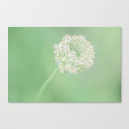 Spring Green Queen Canvas Print