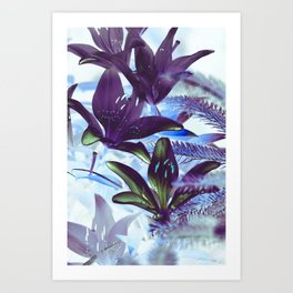 Moonlight Lillies Art Print