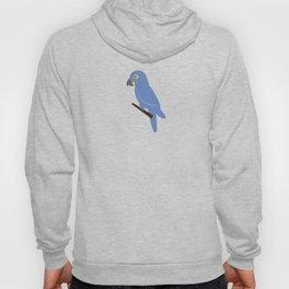 Ararinha Azul Hoody