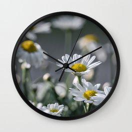 leucanthemum Wall Clock
