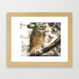 Burrowing Owl - Low Poly Technique Framed Art Print