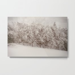 Snow Falling on Cedars Metal Print