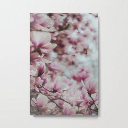 Pink Magnolia Flowers 2 Metal Print