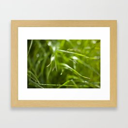 Blades Framed Art Print