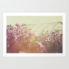 October Blooming 03 Art Print