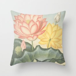 Pastel Flowers : The Sacred Egyptian Bean: New Illustration Of The Sexual System Throw Pillow