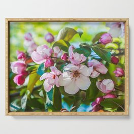Pink apple blossom Serving Tray