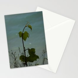 Plant of a Bluff Stationery Cards