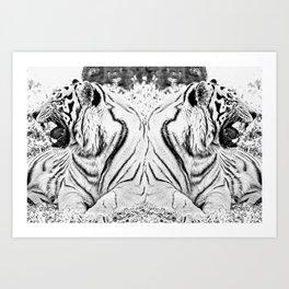 Tigers mirror Art Print