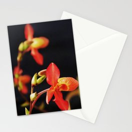 The Andean Fire Dance Stationery Cards