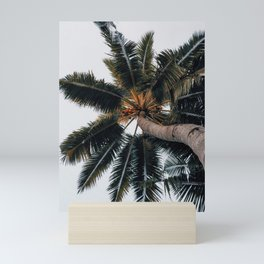 Palms Mini Art Print