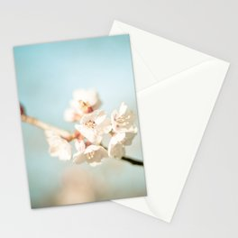 Pink Spring Cherry Blossoms Stationery Cards