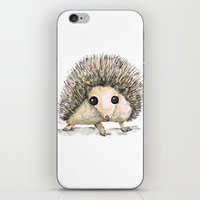 hedgehog iPhone & iPod Skins featuring Hedgehog by Bwiselizzy