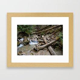 fallen falls Framed Art Print