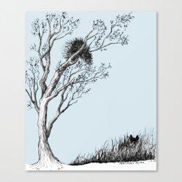 Porcupine's Helper Canvas Print