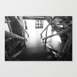 Into The Unkown Canvas Print