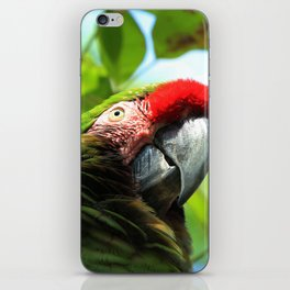 Mister Parrot iPhone Skin
