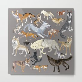 Wolves of the world 1 Metal Print