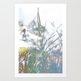 Freedom (Dandelion) Art Print