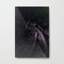 Roots in Shadow Metal Print