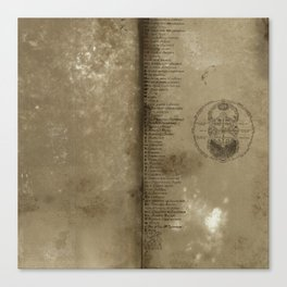 Declaration, a antique paper texture that would look great on a case of any kind. Artist recommends  Canvas Print