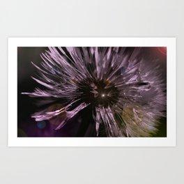Blow away Dandelion - textured photography Art Print