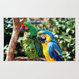 Macaw Parrots Rug