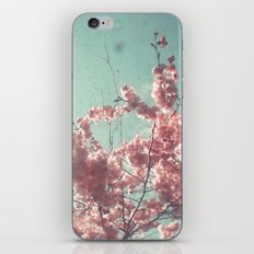 Candy Floss iPhone & iPod Skin