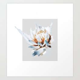 Untitled. Floral study Art Print
