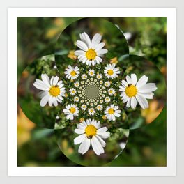 Magic Field Summer Grass - Chamomile Flower with Bug - Polarity #1 Art Print