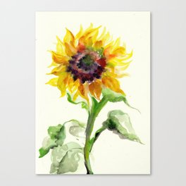 Sunflower Watercolor Canvas Print