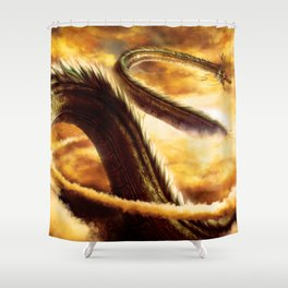 a ride with shenron Shower Curtain
