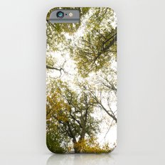 Top of the Trees Slim Case iPhone 6