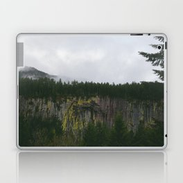 Landscape, Gifford-Pinchot national forest Washington Laptop & iPad Skin