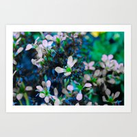 TheBlues Flower Art Print
