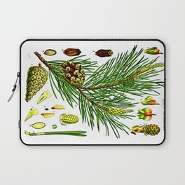 Pinus sylvestris Laptop Sleeve
