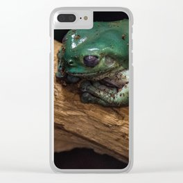 Froggy Clear iPhone Case
