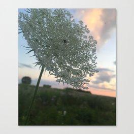 A Kingdom for a Flower. Canvas Print