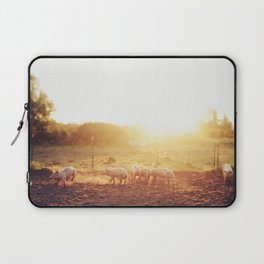Pig Dust Laptop Sleeve
