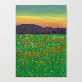 Temecula, California Spring Field of Poppies Canvas Print