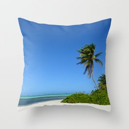 Crystal Clear Day on the Beach Throw Pillow