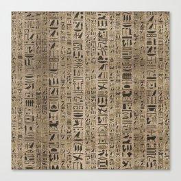 Egyptian hieroglyphs on wooden texture Canvas Print